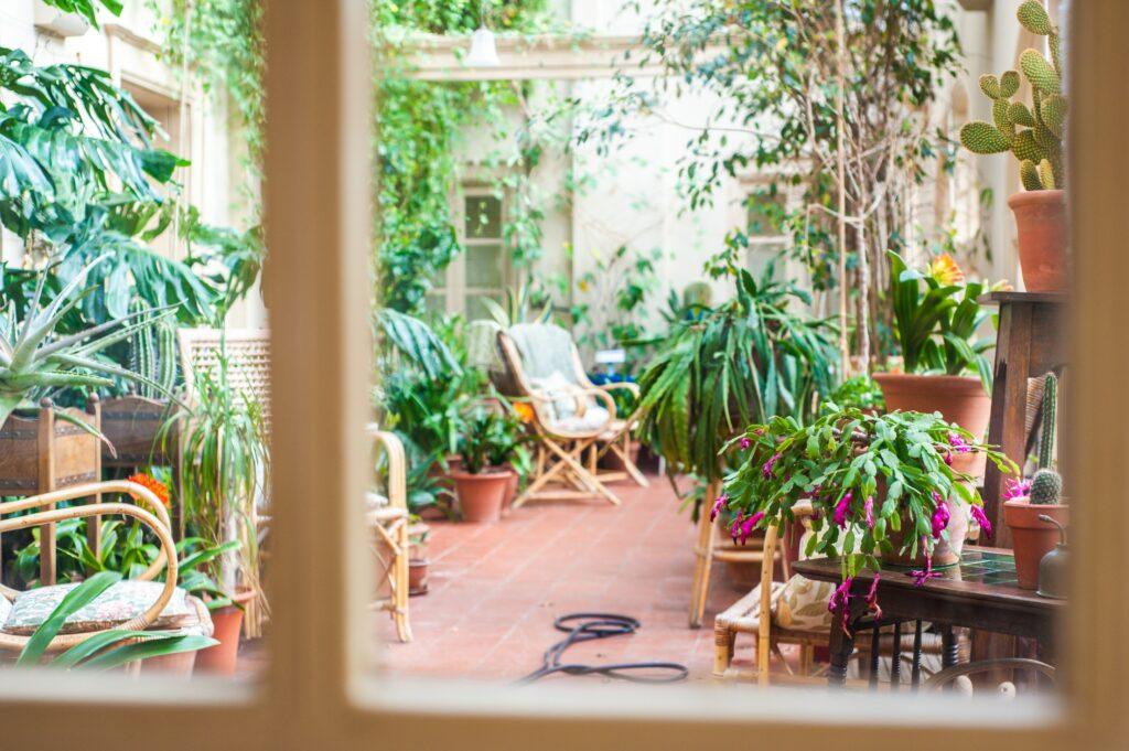 Balkon bahçesi permakültür