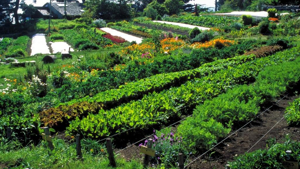 Doğadan ilham alınarak sürdürülebilir insan yerleşimleri sağlamayı amaçlayan tarımsal bir tasarım modelidir. Nesnelerin birbirleriyle sağlıklı ve sürdürülebilir bir bütün olası amaçlanır.